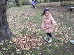 一生懸命落ち葉を集める林田会員の娘さん